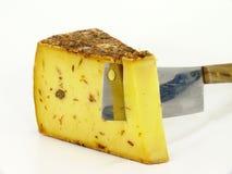 Rått mjölka ost Arkivfoto