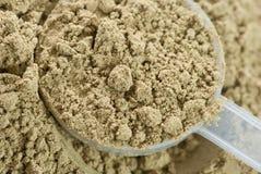 Rått organiskt hampaproteinpulver Arkivfoton