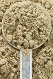 Rått organiskt hampaproteinpulver Arkivfoto