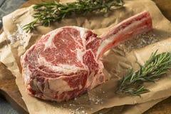 Rått rött gräs Fed Tomahawk Steaks Royaltyfria Bilder