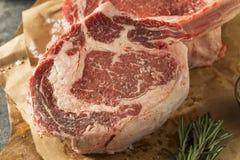Rått rött gräs Fed Tomahawk Steaks Arkivfoton