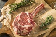 Rått rött gräs Fed Tomahawk Steaks Fotografering för Bildbyråer