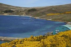 Règlement de West Point dans Falkland Islands Photo libre de droits