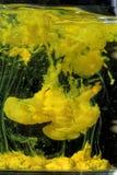 Réaction chimique produisant une couleur jaune images libres de droits