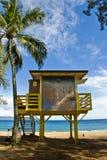Réalité hawaïenne Images stock