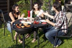 Réception de barbecue Photographie stock libre de droits