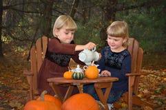 Réception de thé d'automne Images libres de droits