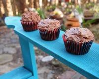 Réception en plein air de petits gâteaux Images libres de droits