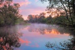 Réchauffez le ciel rose au-dessus du fleuve de Narew, Pologne. Photographie stock