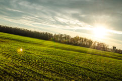 Réchauffez le coucher du soleil d'automne Photographie stock
