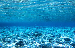 Récif coralien en mer bleue Photos libres de droits