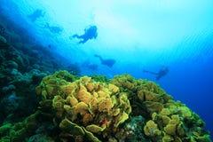 Récif coralien et plongeurs autonomes Images stock