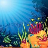 Récif coralien et poissons colorés Photographie stock