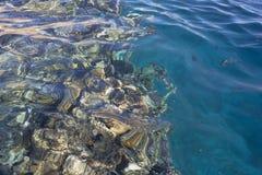 Récif coralien sous l'eau Photographie stock libre de droits