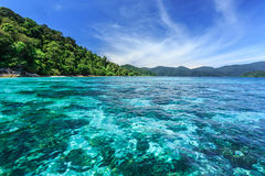 Récif coralien sous la mer clair comme de l'eau de roche à l'île tropicale Photographie stock