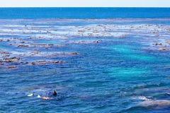 Récif exposé à marée basse image libre de droits