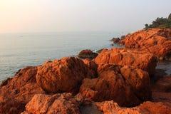 Récif rouge Photographie stock libre de droits