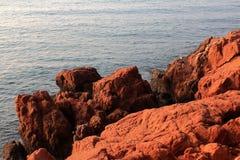 Récif rouge Image stock