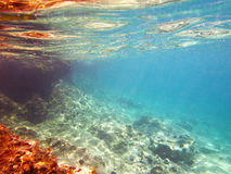 Récif sous-marin Images libres de droits