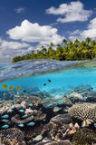 Récif tropical - cuisinier Islands - South Pacific Image stock