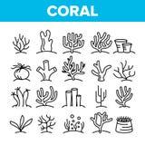 Récifs coraliens et ensemble linéaire d'icônes de vecteur d'algue illustration de vecteur