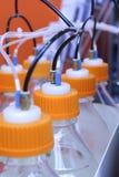 Récipients en plastique avec des membres de leurs tubes minces Image stock