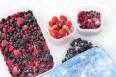 Récipients en plastique de baies mélangées surgelées dans la neige Photographie stock libre de droits