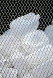 Récipients en plastique réutilisés Photos libres de droits