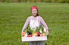 Récolte, Photo stock