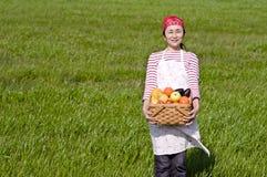 Récolte, Photographie stock