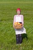 Récolte, Image libre de droits