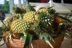 récolte d'ananas dans un panier thailand image libre de droits
