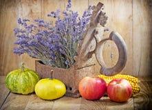 Récolte d'automne Photo stock