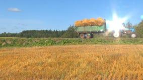 Récolte d'automne de blé banque de vidéos