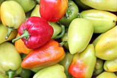 Récolte d'automne des légumes et des fruits en gros plan images libres de droits