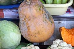 Récolte d'automne des légumes et des fruits en gros plan image stock