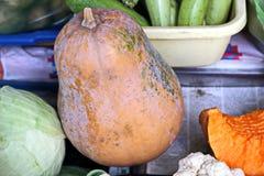 Récolte d'automne des légumes et des fruits en gros plan photos libres de droits