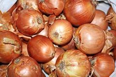 Récolte d'automne des légumes et des fruits en gros plan photos stock