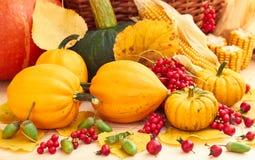 Récolte d'automne : potirons, baies, maïs, feuilles et gland photographie stock