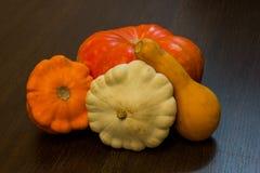 Récolte d'automne - potirons et courge Variétés de potiron et de courgette Photographie stock