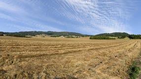 Récolte d'ivraie développée parOrégon dans la mi-Willamette vallée, Marion County photos stock