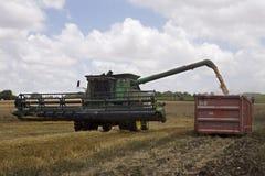 Récolte de blé Photographie stock libre de droits