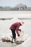 Récolte de casserole de sel Images libres de droits