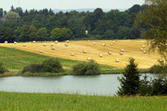 Récolte de foin près du lac images libres de droits