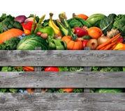 Récolte de fruits et légumes Photos stock