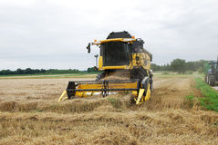 Récolte de grain, Allemagne Photographie stock
