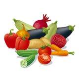 Récolte de légumes Images libres de droits