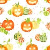 Récolte de potiron et modèle sans couture de vecteur de décorations de Halloween Photo libre de droits