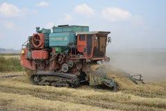 Récolte de riz Photo libre de droits