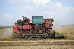 Récolte de riz Photo stock